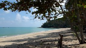 Sea sun sand and trees, relaxation beach in Thailand. Beautiful and quiet beach  in Sichon, Nakhon Si Thammarat ,South of Thailand Royalty Free Stock Photography