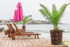 Sea sunbeds greens royalty free stock images