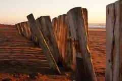 Sea sunrise 6. Wooden sticks on the beach Royalty Free Stock Photos