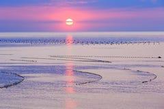Sea sunrise. Stock Photos