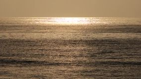 Sea at sunrise Stock Image