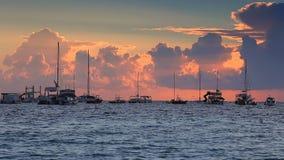 Sea sunrise and speed boat near exotic beach. Punta Cana, Dominican Republic.  stock video