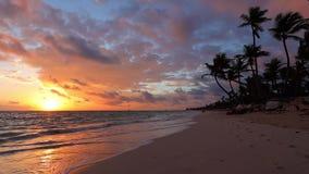 Sea sunrise and tropical beach on caribbean island. Punta Cana, Dominican Republic.  stock video footage