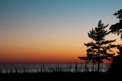 Sea sunrise. View of calm sea at sunset with silhouette of the pine and place for your text, horizontal Royalty Free Stock Photos
