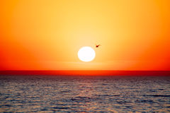 Sea Sunset Stock Image