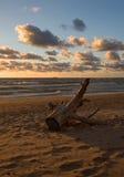 Sea sunset. Baltic sun sky coast clouds Stock Image