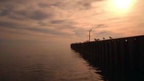 Sea sunset. Golden sea sunset. Sunset sea. Orange sunset. Sea pier with seagulls. Sea sunset. Sunset reflected in water. Golden sea sunset. Sunset sea. Orange stock video