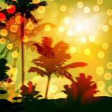 Sea sunset with island and palm trees Stock Image