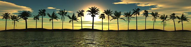 Sea sunset. Panorama. Palm trees Stock Photos