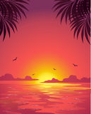 Sea sunset (pink) Stock Photography