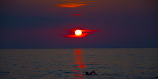 Sea sunset. Silhouette of young man swimming at sea sunset Royalty Free Stock Photo