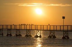 Sea, Sunset, Sun, Sunrise