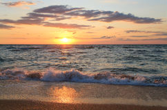 Sea sunset surf wave Royalty Free Stock Image
