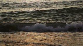 Sea sunset stock footage