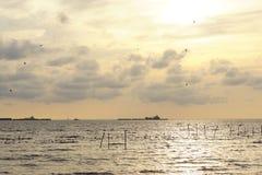 Sea. Sunset travel thailand Babgpoo stock photo