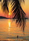 Sea Sunset on tropical Royalty Free Stock Image