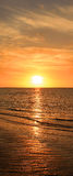 Sea sunset. stock images