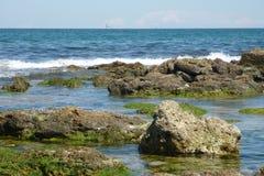 Sea surf Royalty Free Stock Photo