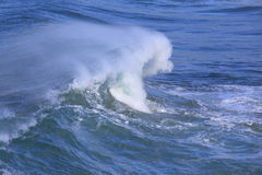 Sea surf great wave Royalty Free Stock Image