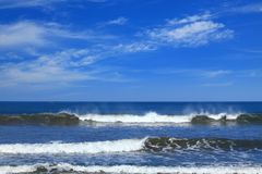 Sea surf. At the pacific ocean coast royalty free stock image