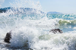 Sea surf wave Royalty Free Stock Photos