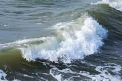 Sea surf wave Royalty Free Stock Photography