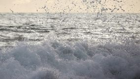 Sea Surf Wave at Sunset Close-Up. Slow Motion. Indonesia. Sunset on the shore of the Pacific Ocean. Sea surf wave close-up. Slow motion stock footage