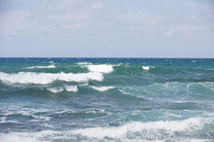 Sea surf waves with foam Stock Images