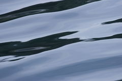 Sea surface. Stock photo of Sea surface stock images