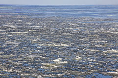 Sea surface with broken ice floes Royalty Free Stock Photography