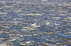 Sea surface with broken ice floes Royalty Free Stock Images