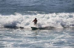 Sea surfing Royalty Free Stock Photo