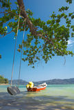 Sea swing. View of nice funny ocean swing under the big tree on shore Stock Image