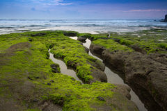 Sea Tanah lot complex. Bali. Indonesia Royalty Free Stock Images