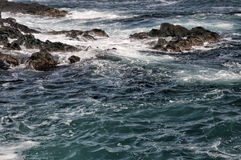 Sea in tempest on rocks Royalty Free Stock Photo
