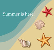 Sea text frame with shells and sea stars Royalty Free Stock Images