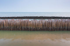 Sea tide bamboo stick barrier wall for protection. Coastline wave Stock Images