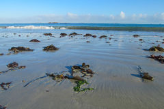 Sea tide waves Royalty Free Stock Image