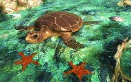 Sea Tortoise in Shallows Royalty Free Stock Photo
