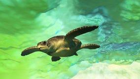 Sea Tortoise Swimming Stock Photo