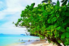 Sea in Trang. Thailand Royalty Free Stock Images