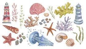 Lighthouse jellyfish starfish  corals shells beach watercolor