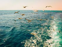 Sea travel. Wide angle view. Royalty Free Stock Photos