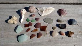 Sea Treasures Stock Photos