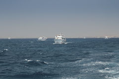Sea trip. Many yachts on the high seas over the island Royalty Free Stock Image