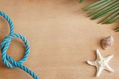 Sea tropical still life on a wooden background with a starfish, a leaf of a palm tree and a blue rope tied to a knot, copy space f Royalty Free Stock Images