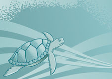 Sea turtle. Background for page layout or presentations Stock Image
