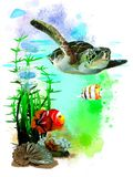 Sea Turtle And Tropical Fish On Abstract Watercolor Background. Royalty Free Stock Image