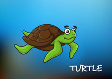Sea turtle character illustration Royalty Free Stock Image