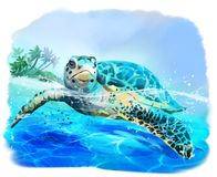Sea turtle floats. Watercolor drawing stock illustration
